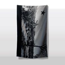 The Joshua Tree Flag by Michael Leon
